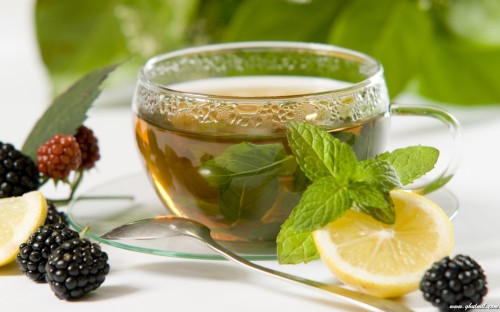 green-tea weight loss products